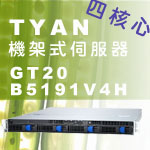 Tyan泰安GT20 B5191V4H