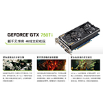 SparkleSparkle GeForce 700 Series GTX750Ti 2GD5 狂版