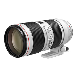 CanonCanon EF70-200mm f/2.8L IS III USM